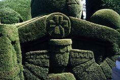 deeply incised hedge - wow!