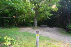 Tea Lake Algonquin Park Ontario Canada