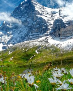 Eiger Grindelwald Switzerland View On Eiger Mountain – Images Gallery Cool Places To Visit, Places To Travel, Grindelwald Switzerland, Mountain Images, Visit Switzerland, Swiss Alps, Wanderlust, Mountain Landscape, Nature Pictures