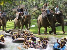 Bali Adventure Tours - Day Tours