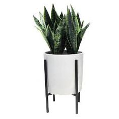• Durable fake plant parts made of plastic and wire<br>• Ceramic planter with a white glaze<br>• Modern metal stand with a black finish<br>• Sized for the floor<br><br>Threshold's Artificial Snake Plant in a Modern Planter offers the freshness of a houseplant without the maintenance. Perch this lifelike artificial plant next to an armchair or bench to add some life to your space.