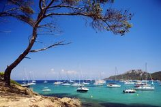 Here are the top 10 best things to do on the French Riviera: Go Back to Nature on the Iles d'Hyères
