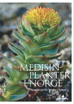 Medisinplanter i Norge - helsebringende vekster i naturen