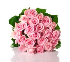 Wholesale Roses: 50 Fresh Pink Roses (Long Stemmed - from Colombia - Farm Direct Wholesale Fresh Flowers Rose Delivery, Flower Delivery, White Rose Flower, White Roses, Yellow Roses, Buy Flowers Online, Pink Rose Bouquet, Hand Bouquet, Beautiful Bouquet Of Flowers