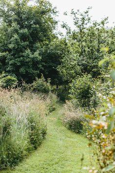 Rolfs Farm and garden East Sussex Fairytale Garden, Dream Garden, Amazing Gardens, Beautiful Gardens, Landscape Design, Garden Design, Fuerza Natural, Garden Cottage, Prairie Garden