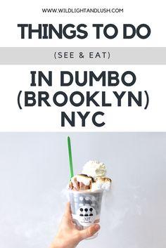 dumbo where to eat things to do things to see nyc new york city DUMBO BRIDGES ice cream liquid nitrogen ice cream