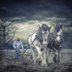 The team by Adrian Donoghue on 500px