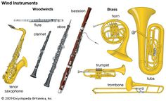 wind instruments include the woodwinds such as the flute the clarinet ...