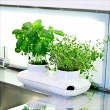 Горшок для выращивания трав и овощей Duo herb pot