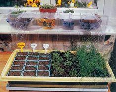 Výsev a výsadba zelenín