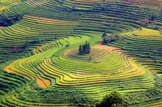 Tay Bac Viet Nam  http://taybacsensetravel.com