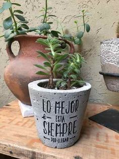 Rachel Kirklin's media content and analytics Flower Planters, Flower Pots, Planter Pots, Concrete Crafts, Concrete Projects, Garden Terrarium, Garden Pots, Succulent Pots, Planting Succulents