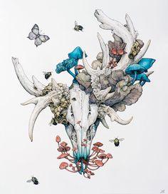 PERUKE by Lauren Marx