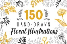 150 Hand-Drawn Floral Illustrations from DesignBundles.net