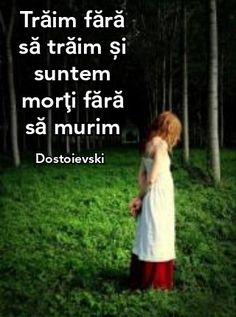 Nicu, Just Me, Alba, Mindfulness, Wisdom, Words, Quotes, Internet, 3d