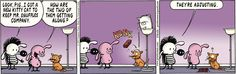 Pearls Before Swine - One life down, eight to go on Mr. Snuffles' rival?