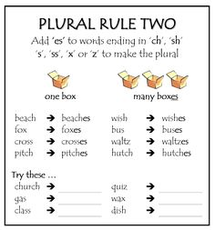 plural rule 1 - Google Search More
