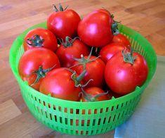 Kto raz skúsi na priesady rajčín túto metódu, inak to už robiť nebude: Držte sa tohoto a tešte sa na gigantickú úrodu!