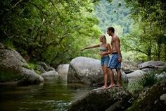 Read about the Swimming Holes of the Daintree Rainforest and view the Daintree Rainforest tours that will take you there Daintree Rainforest, Swimming Holes, Tours