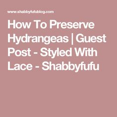 How To Preserve Hydrangeas | Guest Post - Styled With Lace - Shabbyfufu