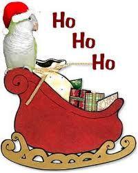 A Quaker Parrot Christmas