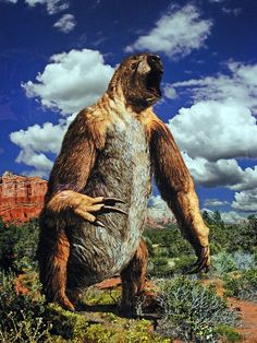 Megatherium / Giant Ground Sloth at the Houston Museum of Natural Science (Bruce Aleksander & Dennis Milam)