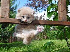 Hang on baby!