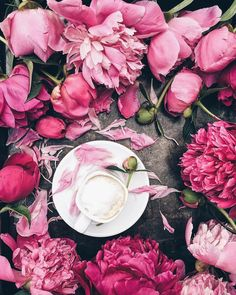 Coffee. Flowers. Spring 🌸