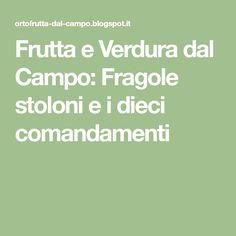 Frutta e Verdura dal Campo: Fragole stoloni e i dieci comandamenti