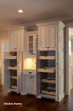 Kitchen Pantry Design, Kitchen Pantry Cabinets, Diy Kitchen, Kitchen Storage, Kitchen Decor, Kitchen Ideas, Cupboards, Pantry Ideas, Kitchen Things