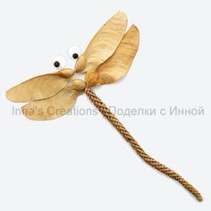 Dragonfly made from natural materials
