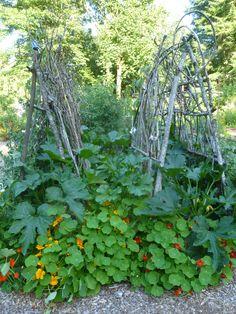 Potager Garden Try these DIY garden trellis ideas. Potager Garden, Diy Garden, Garden Trellis, Dream Garden, Garden Projects, Garden Ideas, Diy Trellis, Garden Edging, Trellis Design