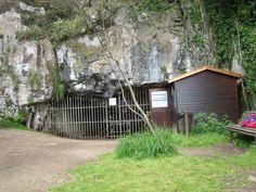 Asturias Cueva pindal