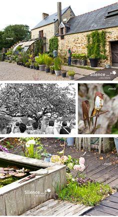 Stephane Marie, Plantar, Plantation, France 5, Gardening, Garden, How To Make Paper Flowers, Winter Garden, Patio