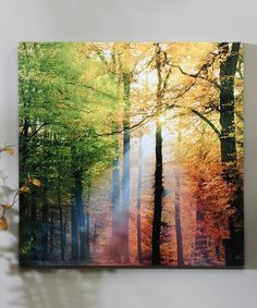 Another great find on #zulily! Sunlight in the Forest Wrapped Canvas #zulilyfinds