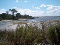 False Cape State Park is a state park in Virginia Beach. As part of The Outer Banks of Virginia, it lies on a mile-wide barrier spit between the Back Bay of the Currituck Sound and the Atlantic Ocean.