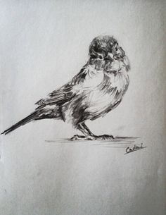 Bird, Drawings, Artwork, Painting, Animals, Sketches, Animais, Work Of Art, Animales