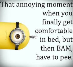 Funny Minions Pictures Of The Week 013