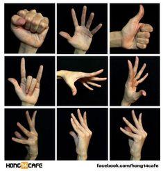 Resultado de imagen para reference hands