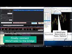 MetaTrader - Interactive Brokers Bridge Quickstart Tutorial - YouTube Interactive Brokers, Bridge, Youtube, Bridge Pattern, Bridges, Youtubers, Youtube Movies, Attic, Bro