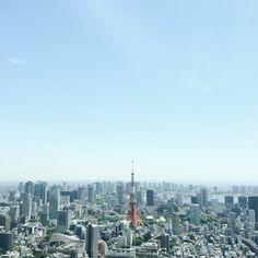 Tokyo / photo by budbotanical