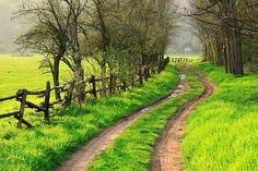 Bucket List:  Live in the countryside, with dirt roads and maybe a few chickens and other farm animals. :)