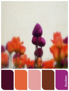 Lush Tulips color palette made by Susan Tuttle -- photo by Susan Tuttle…