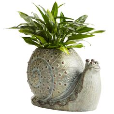 Our Terracotta Snail Planter's intricate designs showcase your favorite plant