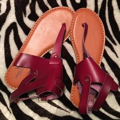 AEO Cherry Leather Gladiator Sandals American Eagle Outfitters cognac & cherry leather gladiator sandals. Size 9. NWT. Please send reasonable offers through the offer button! American Eagle Outfitters Shoes Sandals