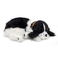 Perfect Petzzz Cachorro Cocker Spaniel - Imex