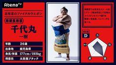 「abema 大相撲」の画像検索結果
