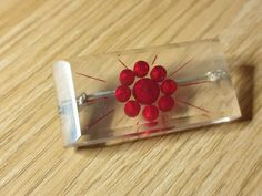 Brooches, Cherry, Plastic, Fruit, Vintage, Collection, Food, Brooch, Essen