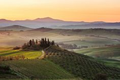 Morning dream by Roman Burri / Private Villa Bali, Google Earth, Wide World, Maine, Roman, Vineyard, Places, Painting, Outdoor