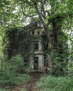 Overgrown abandoned villa in Germany - Abandoned Architecture - Big City Buildings - Modern and Historical Buildings - City Planning - Travel Photography Destinations - Amazing Ugly and Beautiful Places Old Abandoned Houses, Abandoned Mansions, Abandoned Places, Old Houses, Abandoned Castles, Haunted Places, Photo Post Mortem, Slytherin Aesthetic, Old Buildings